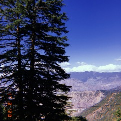 Landour, Uttarakhand, March 2020